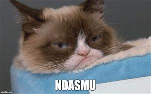 Grumpy Cat Ndasmu